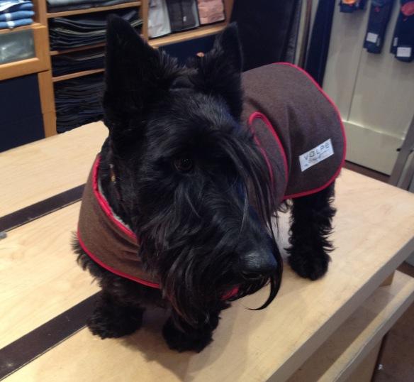 Bonnie in her Coat